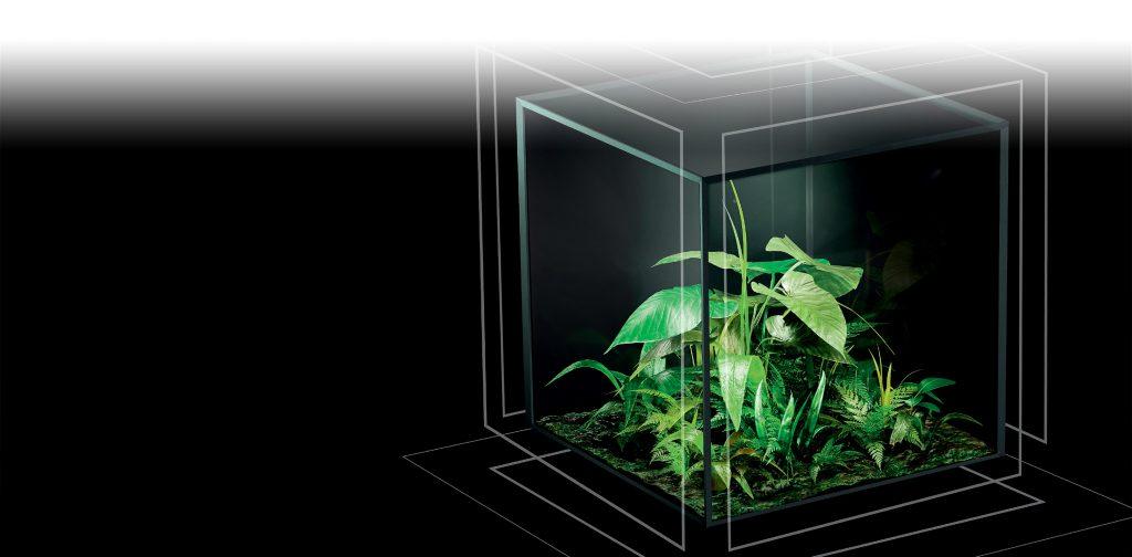 Technal© entrerpise française expose une plante verte dans un bocal de verre carré